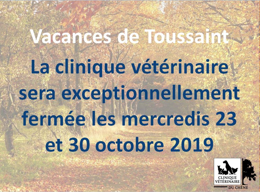La clinique vétérinaire sera exceptionnellement fermée les mercredis 23 et 30 octobre 2019